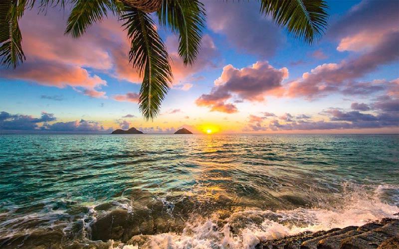 Tour Châu Mỹ - Khám phá Quần đảo Hawaii xinh đep (6 ngày/ 5 đêm) - Dịch vụ