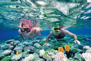 NHA TRANG - ĐÀ LẠT: Thiên đường biển và hoa