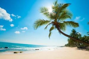 PHÚ QUỐC: Khám phá đảo ngọc (3 ngày) - Dịch vụ tốt
